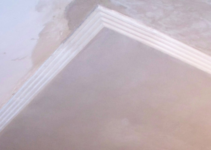 ross-fin-ceiling